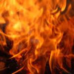 conversations bonfire wild flames