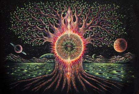 conversations tree of life eye